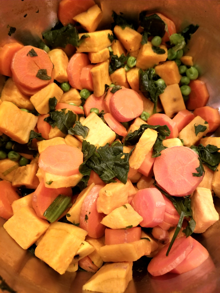 Top 5 homemade dog food recipes your dog will love these healthy yummi vegan dog food forumfinder Images