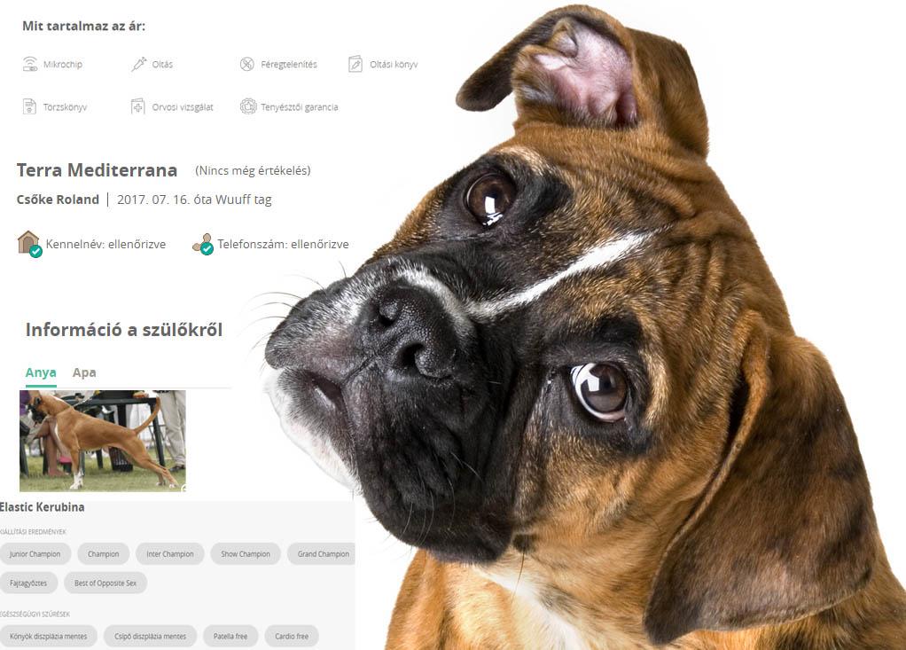 Wuuff.dog profil