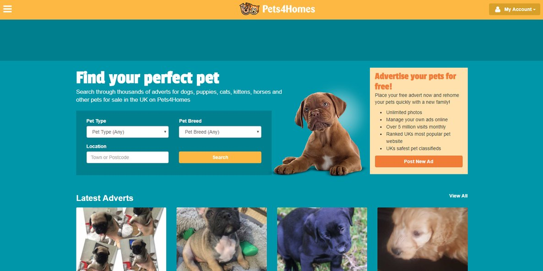 pets4homes website