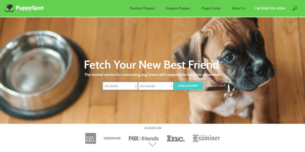 puppyspot website