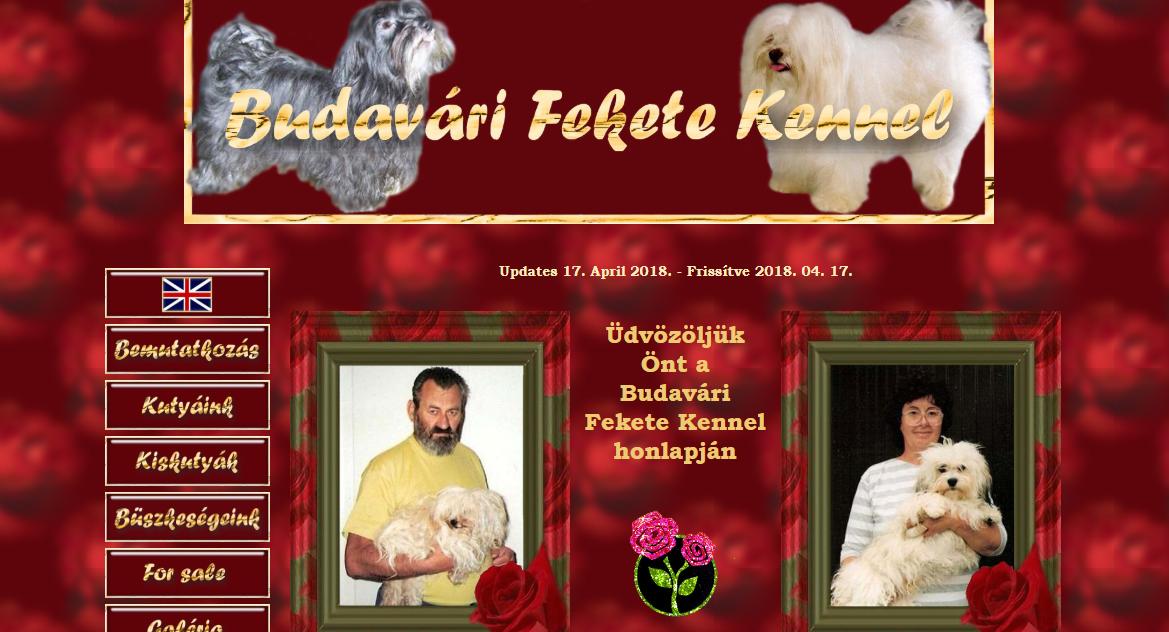 Budavári Fekete Kennel - Havanese / Bolognese - Hungary