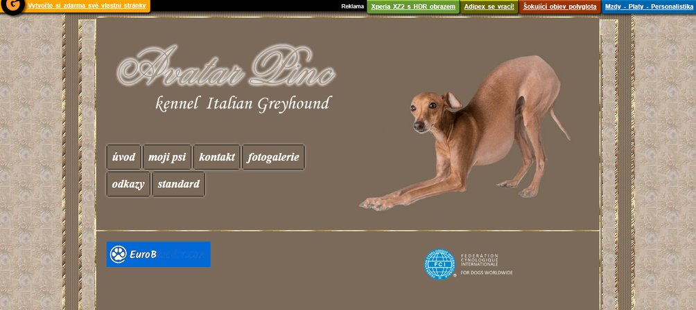 Avatar Linc Kennel - Italian Greyhound - Czech Republic