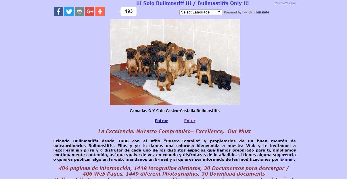 Castro-Castalia Bullmastiffs - Spain