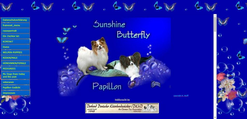 Sunshine Butterfly Kennel - Papillon - Germany