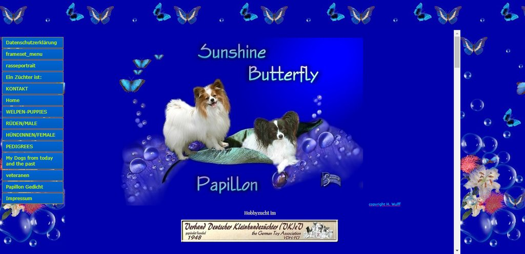 Sunshine Butterfly Kennel - Papillon - Germany