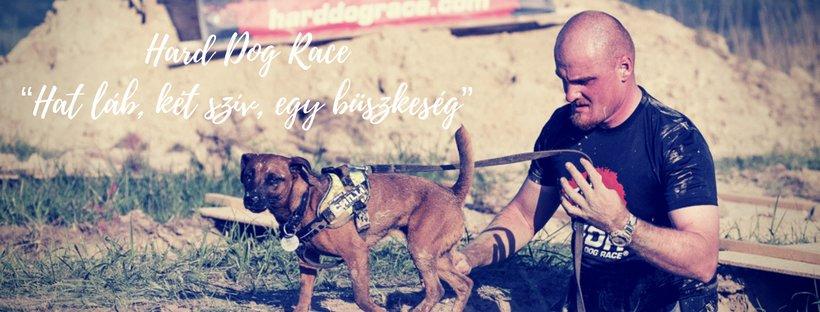 Hat láb, két szív: Hard Dog Race