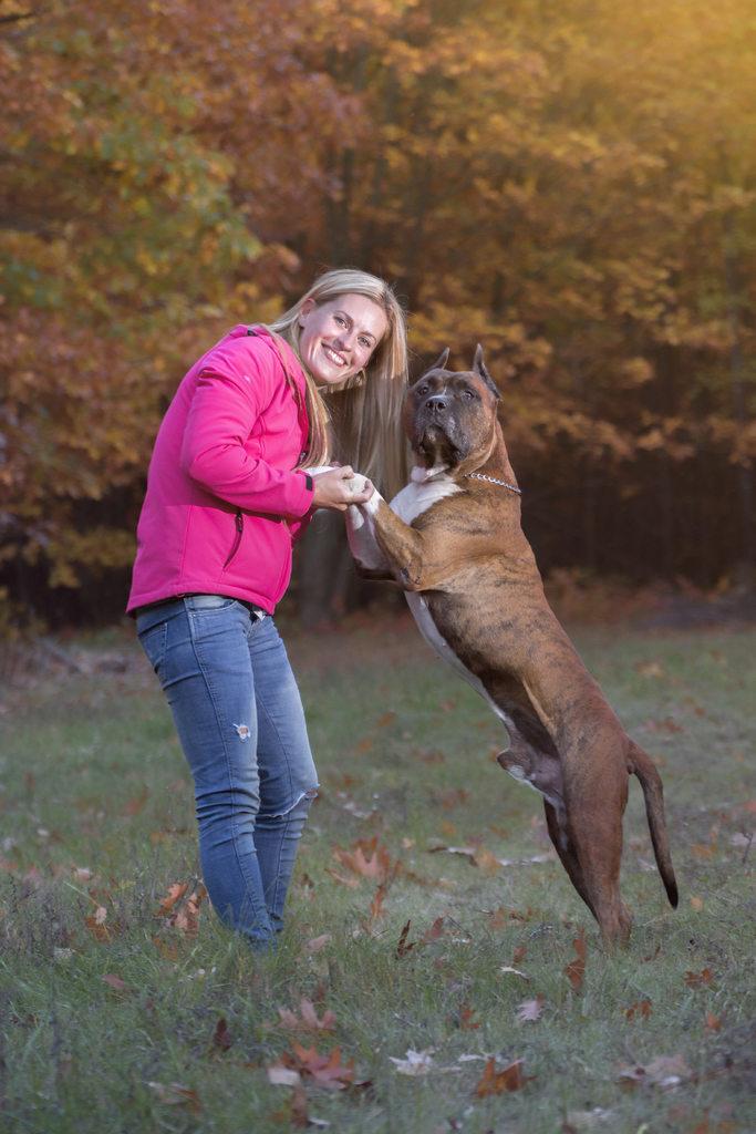 amstaff kiskutya amerikai staffordshire terrier